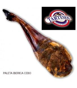 PALETA IBERICA CEBO DE CAMPO